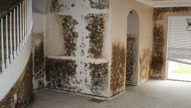 Chinese Drywall Problems Health Effects And Property